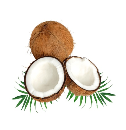 halfs of coconut on green leaves isolated on white photo