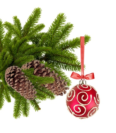 Christmas ball on the tree isolated on white background  photo