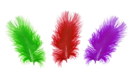 Colorful feather over white background photo