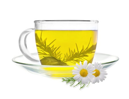 cup of green tea with chamomile flowers isolated on white background photo