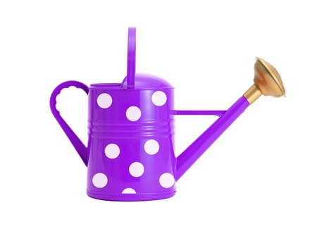 violet polka dot watering can isolated on white Stock Photo - 15898427