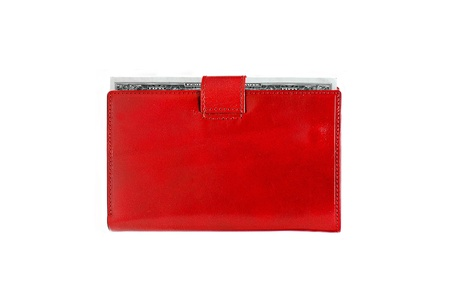 Dollars in red leather purse isolated on white background Stock Photo - 15898464