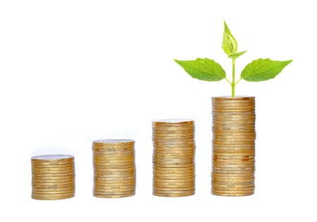 Many coins in column and green plant isolated on white photo