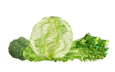 brocolli: Green cabbage, brocolli and celery isolated on white background Stock Photo