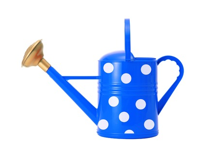 blue polka dot watering can isolated on white background photo