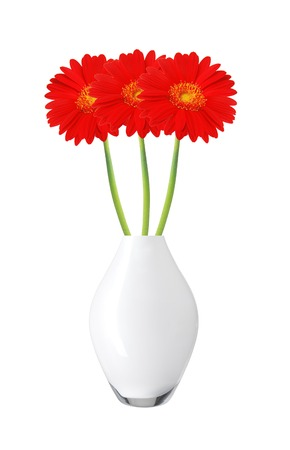 Beautiful Red Gerbera Daisy Flowers In Vase Isolated On White