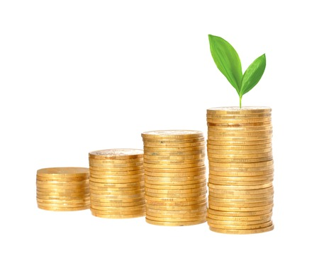 Savings, increasing columns of gold coins and green plant  isolated on white background photo