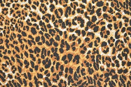 leopard fur as background photo