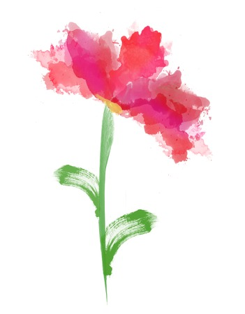 Beautiful watercolor flower over white photo