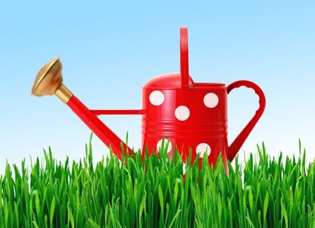 red polka dot watering can on green grass over blue sky photo