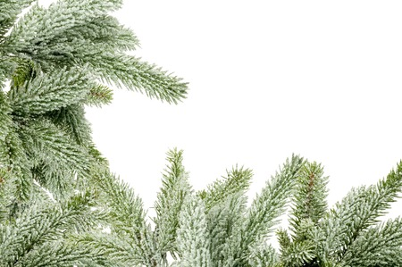 fir tree: Green Christmas tree isolated on white Stock Photo