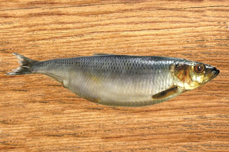 kipper: Smoked Mackarel on the wooden table