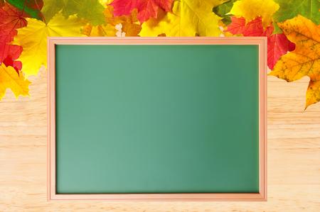 blackboard: Arce Hojas de otoño sobre la textura de madera y pizarra de la escuela de primer plano Foto de archivo