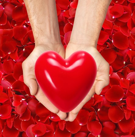 the merciful: red heart in man hands over red rose petals background