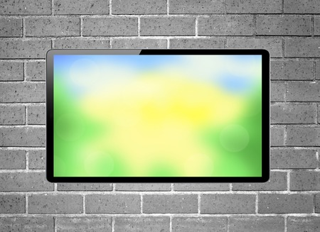 plazma: Blank screen LCD tv with bright nature hanging on a wall Stock Photo