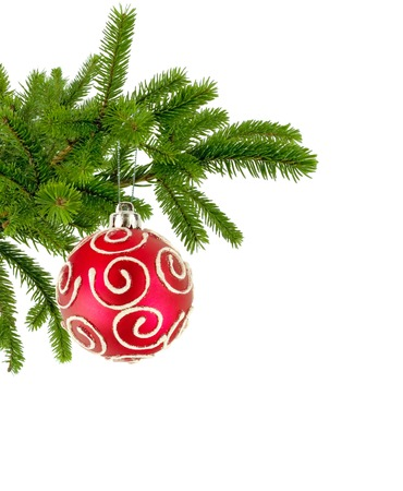 decorar: Christmas tree branch with red decorate ball isolated on white
