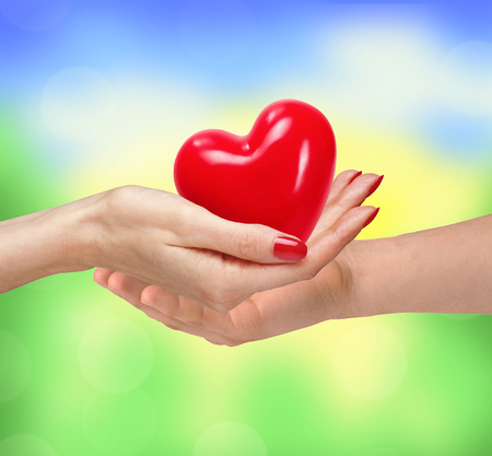 love life: Loving couple holding heart in hands on sunny nature background