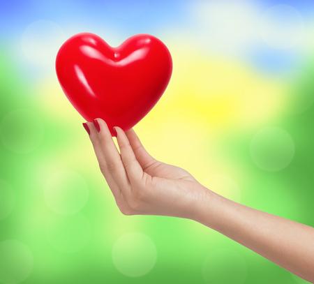 bondad: Corazón rojo en mano de la mujer sobre fondo brillante naturaleza borrosa Foto de archivo