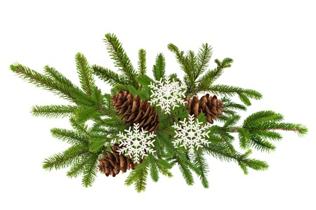 pine cones: green branch of Christmas tree with pine cones isolated on white background Stock Photo