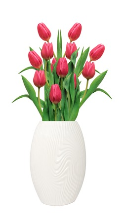 loveliness: Bouquet of pink tulips in white vase isolated on white background Stock Photo