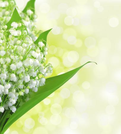 flor de lis: Dise�o de flores de lirio de los valles