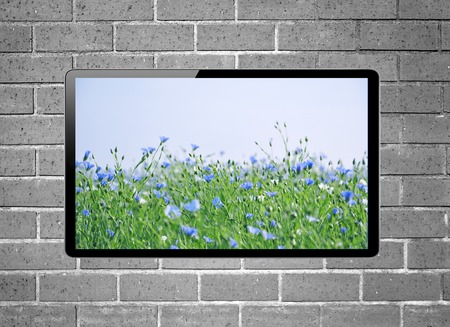 plazma: LCD tv with flower meadow on screen hanging on brick wall Stock Photo
