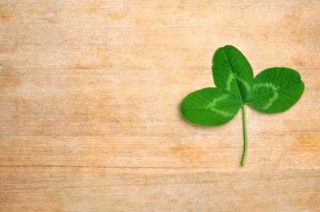 fourleafed: green clover leaf on wooden board (desk)