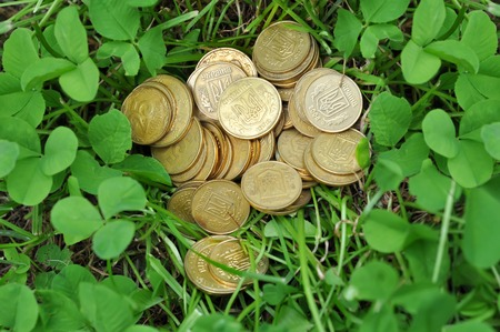 golden coins in green clover leaves
