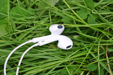 cable tangle: White Headphones, on Green Summer Grass Carpet