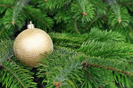 glitter ball: Closeup of Green Christmas-tree and Gold Glitter Ball decorations