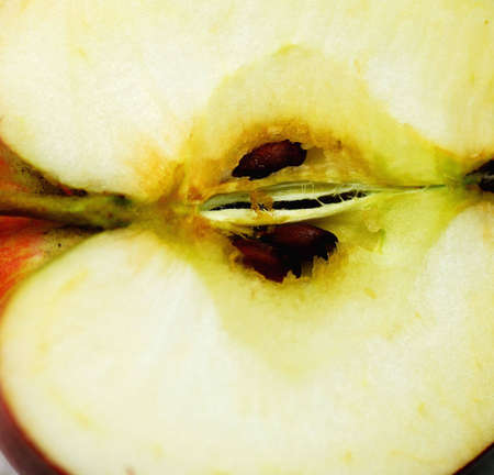 close up shot of an apple with seeds