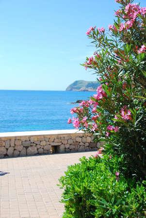coast line of the island mallorca spain Stock Photo