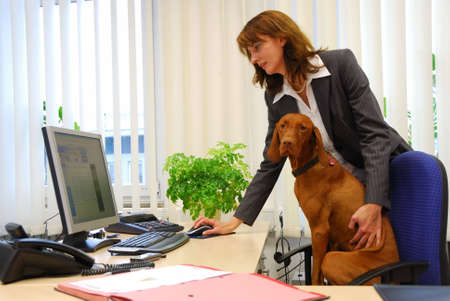 using computer: dog and business woman together in the office