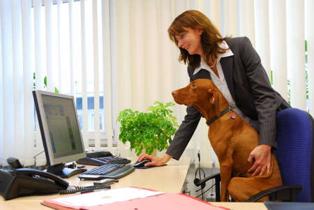 office desk: business woman together with dog in the office
