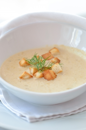 Mushroom soup with bread crumbs and dill photo