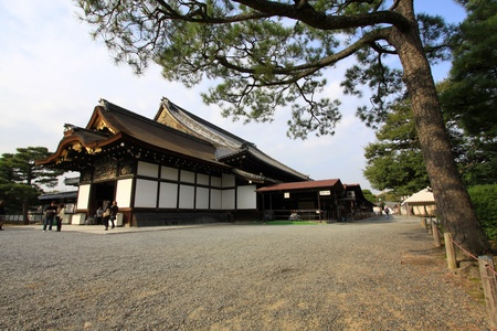 Nijo castle in colorful leaf and tree in japan : Koyo  Editorial