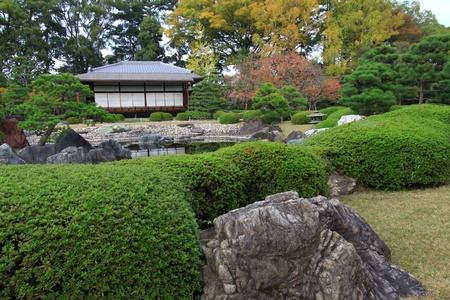 nijo: Nijo castle in colorful leaf and tree in japan : Koyo  Stock Photo