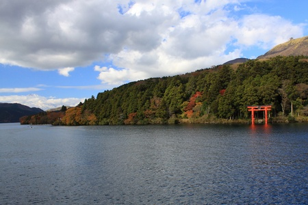 Hakone in Autumn - colorful leaf and tree in japan : Kouyou  photo
