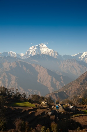 Beautiful view of green field, local house and Himalayan mountains when see during Poonhill peak trekking way, Nepal photo