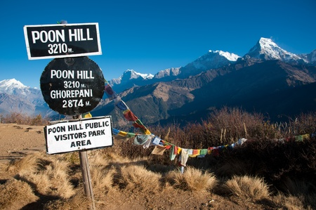 Beautiful view of grass field, colorful flag and Himalayan mountains in morning when see from the top of Poonhill peak, Nepal photo