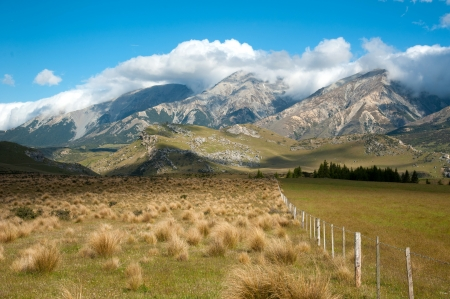 Beautiful landscape of grass field and mountain with blue sky at Arthur s Pass National Park, South Island, New Zealand photo