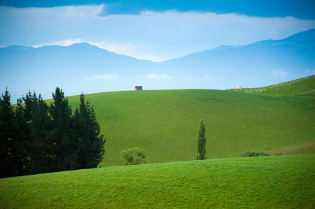 Beautiful view and landscape of green field in South Island, New Zealand Stock Photo
