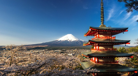 Beautiful panorama view of Mountain Fuji and Chureito Pagoda with cherry blossom in spring, Fujiyoshida, Japan