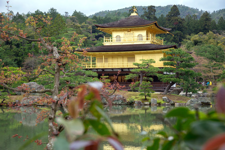 koyo: Kinkakuji Temple in spring season  the famous Golden Pavilion at Kyoto Japan. Editorial