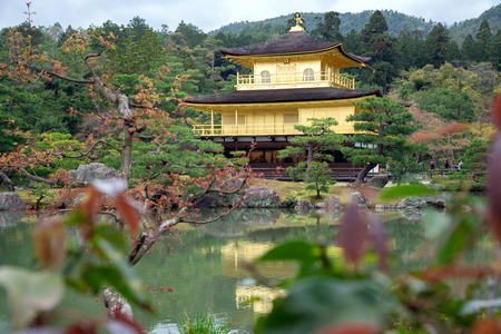 koyo: Kinkakuji Temple in spring season - the famous Golden Pavilion at Kyoto, Japan. Editorial