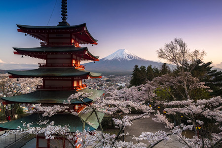 seaonal: Beautiful view of Mountain Fuji and Chureito Pagoda with cherry blossom in spring, Fujiyoshida, Japan