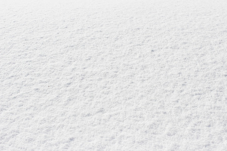 crust: snowy crust, white background