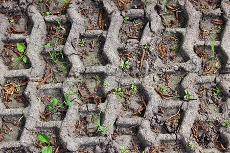 textura: Tracce delle ruote nel fango, dettaglio impronte auto. concentrarsi sul sentiero ruota a terra. tracciare gomma off-road su sterrato dalla luce del giorno. tracce di pneumatici.