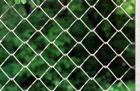 Texture mesh netting for a reticulate background