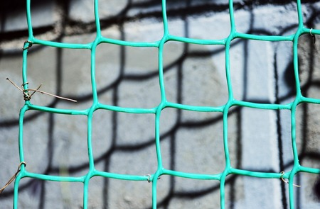 grates: background from green plastic netting for climbing plants